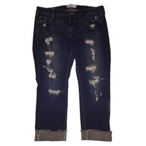 Torrid Boyfriend 16 distressed jeans